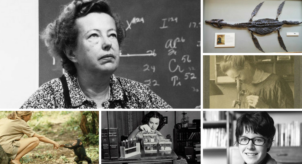 Six scientists you need to know (but have probably never heard of)